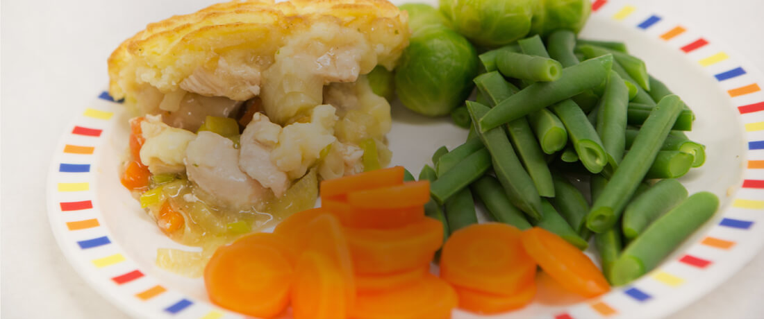 food-plate-banner-image